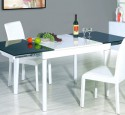 Glass top dining table with leaf