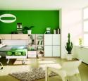 Bedroom paint ideas green