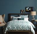 Bedroom paint ideas teal