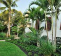 Tropical Landscaping Designs