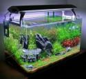 Image For Rimless Aquarium