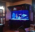 300 Gallon Aquarium Glass