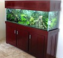 200 Gallon Aquarium Hood