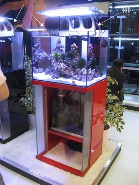 Rimless Aquarium Lighting