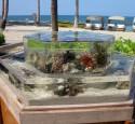 Rimless Aquarium External Overflow