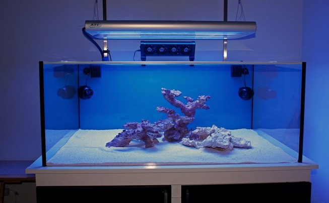 Rimless Aquarium Reef Ready