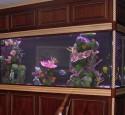 300 Gallon Round Aquarium