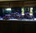 200 Gallon Aquarium With Stand
