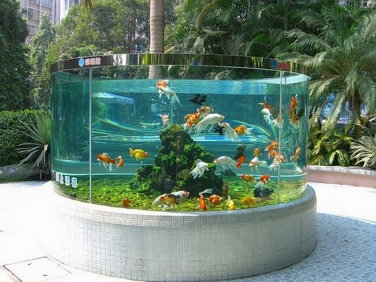 200 Gallon Goldfish Aquarium