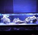 Rimless Long Aquarium