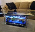20 Gallon Long Acrylic Aquarium
