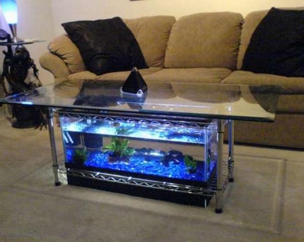 20 Gallon Long Acrylic Aquarium