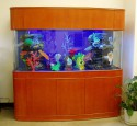 200 Gallon All Glass Aquarium