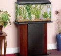 20 Gallon Aquarium Stands