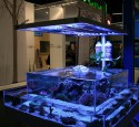 Design For Rimless Aquarium
