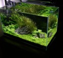 Rimless Aquarium Cover