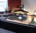 200 Gallon Aquarium For Turtles