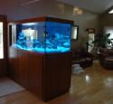 300 Gallon Aquarium Overflow