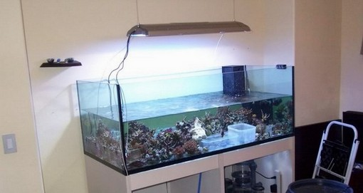 Blau Aquarium Rimless – Open Reef