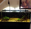 Rimless Aquarium Glass Top