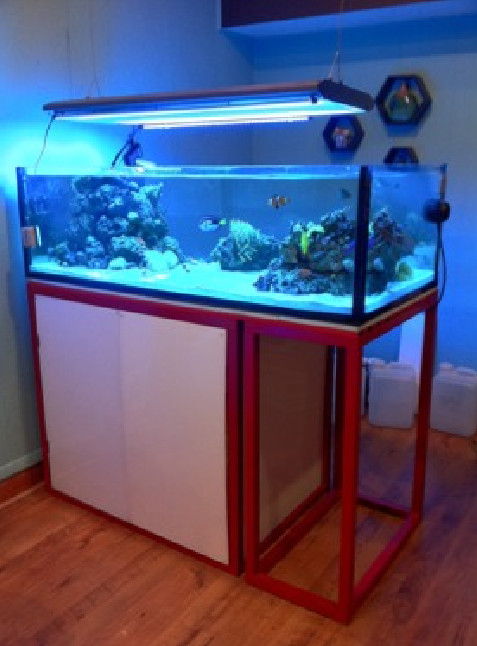 Rimless Aquarium With Stand